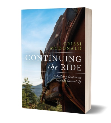 Continuing the Ride Cover 3D